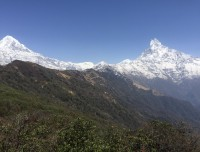 Mount Annapurna and fishtail