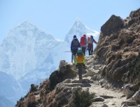 Walk down to pangbuche