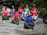 Group Having  yoga surrounding  Bambo forest by the river