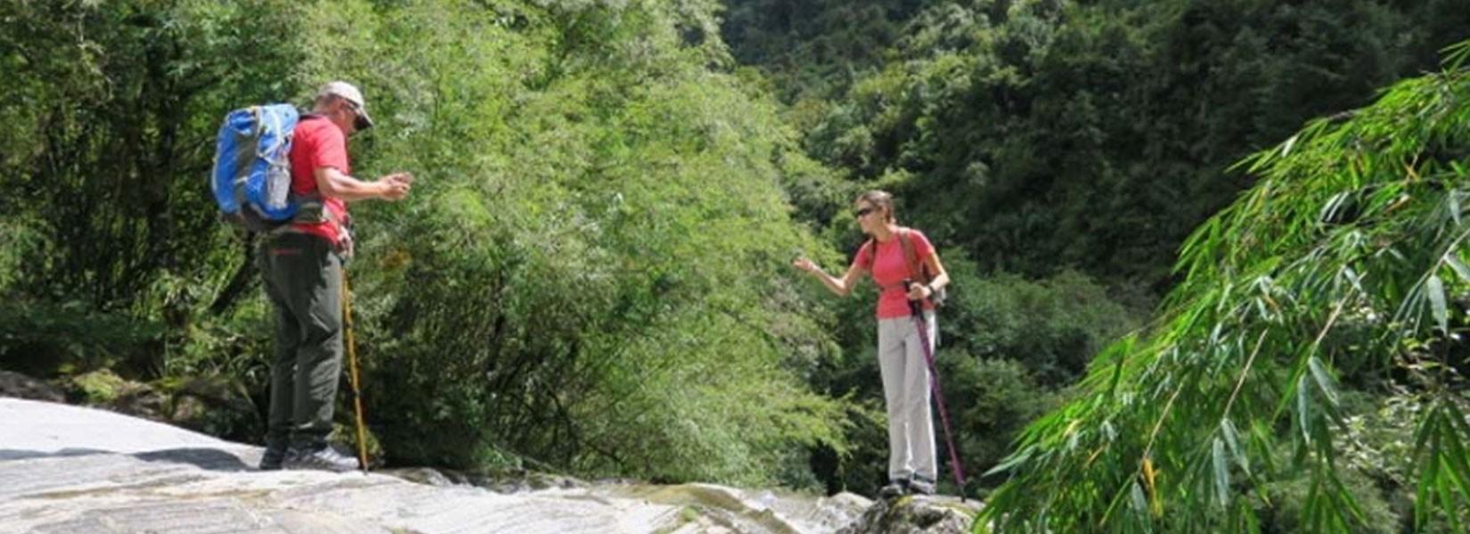 Annapurna Panorama Wild Life Safari